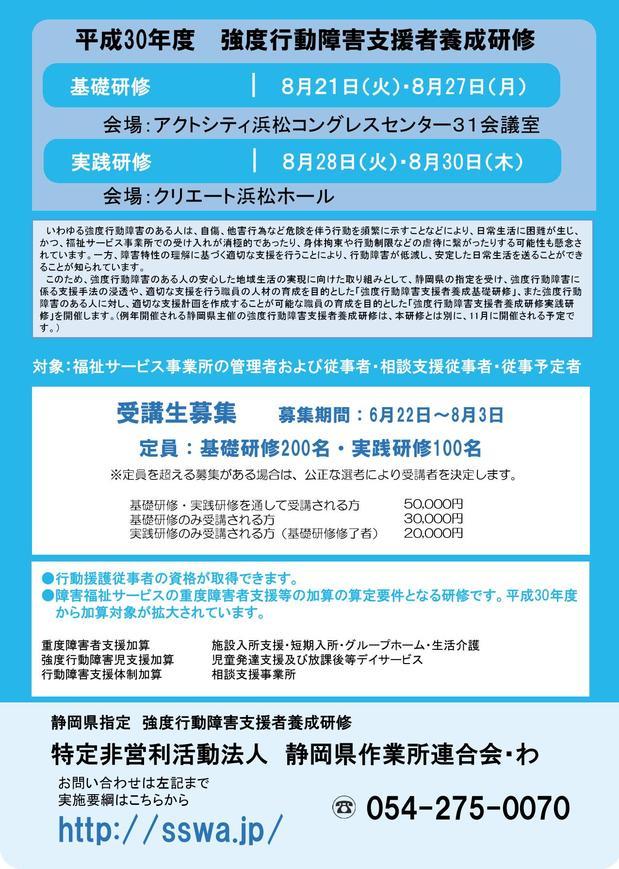 強度行動障害支援者養成研修チラシ0001.jpg